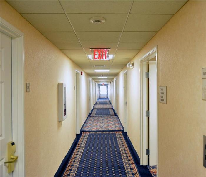 clean and dried carpets in the hallway