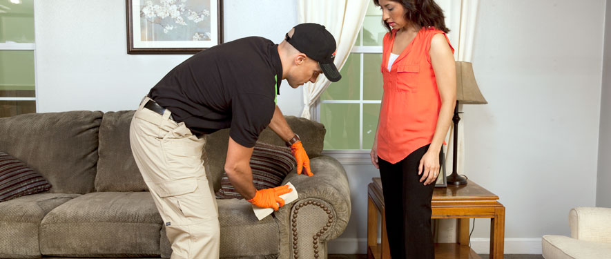 Newington, CT carpet upholstery cleaning