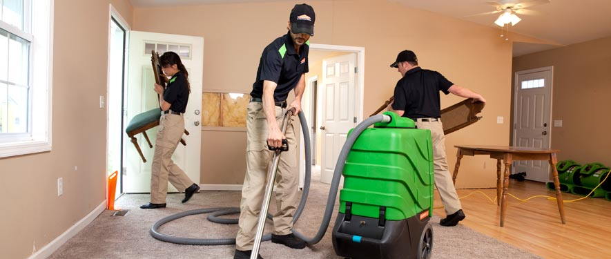 Newington, CT cleaning services