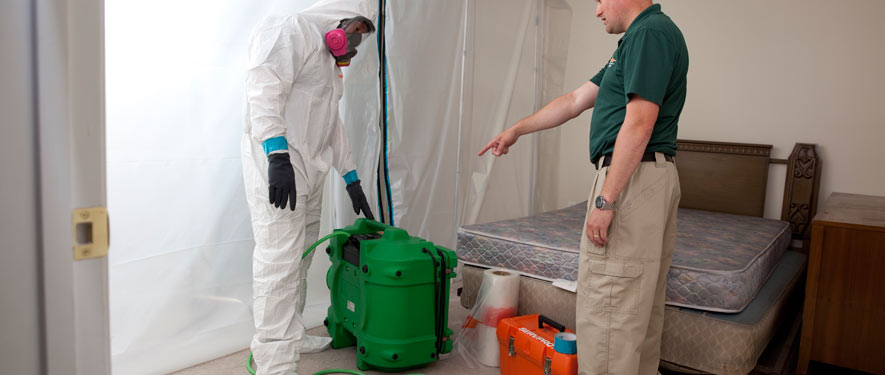 Newington, CT mold removal process